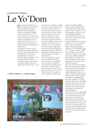Dangé-saint-romain : Le Yo' Dom